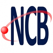 Instituto Newton C. Braga - INCB