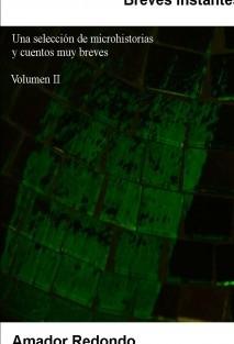 Breves instantes: Una selección de microhistorias y cuentos muy breves - Volumen 2