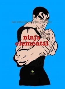 ninja elemental