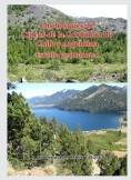 Los bosques de Ciprés de la Cordillera de Chile y Argentina. Estudio geobotánico