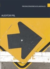 Libro Auditor PRL, autor Editorial Elearning