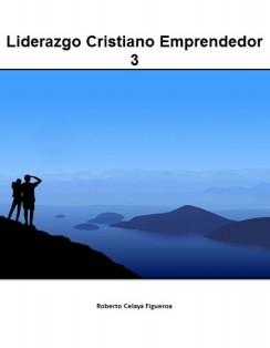 Liderazgo Cristiano Emprendedor 3