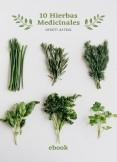 10 Hierbas Medicinales